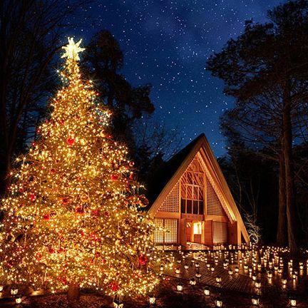 Christmas tree, Tree, Christmas decoration, Christmas, Christmas lights, Nature, Sky, Fir, Light, Lighting,