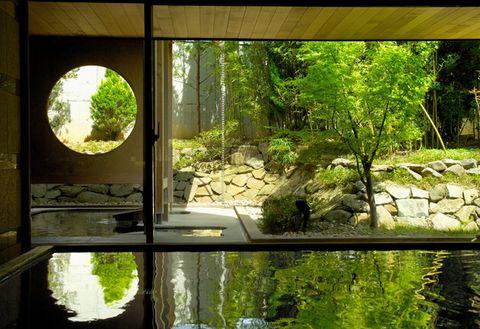 Nature, Natural landscape, Vegetation, Green, Tree, Natural environment, Property, Nature reserve, Biome, Forest,