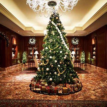Christmas tree, Christmas decoration, Tree, Christmas, Property, Lighting, Room, Christmas ornament, Interior design, Home,
