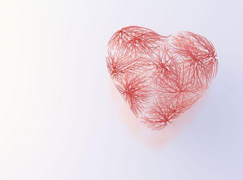 Heart, Pink, Organ, Heart, Human body, Love, Illustration, Valentine's day,