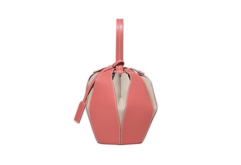 Bag, Handbag, Orange, Pink, Fashion accessory, Beige, Hobo bag, Leather, Plant, Luggage and bags,