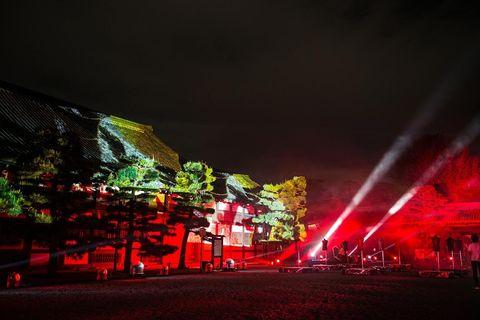Red, Light, Night, Sky, Lighting, Tree, Architecture, Plant, City,