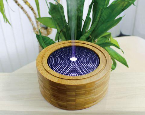 Flowerpot, Leaf, Houseplant, Plant, Grass, Tree, Table, Vase, Wood, Metal,