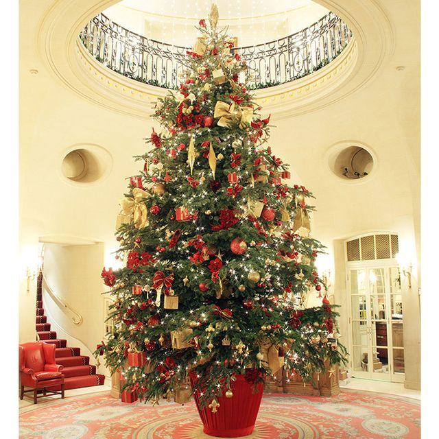 Christmas tree, Christmas decoration, Tree, Colorado spruce, Christmas, Christmas ornament, oregon pine, Plant, Woody plant, Christmas eve,