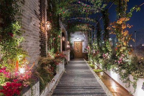 Tree, Lighting, Walkway, Botany, Aisle, Plant, Architecture, Building, Flower, Garden,