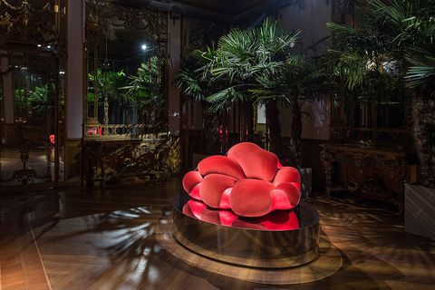Red, Pink, Chair, Furniture, Plant, Tree, Interior design, Flower, Night, Room,