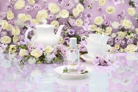 Serveware, Lavender, Purple, Petal, Dishware, Pink, Violet, Porcelain, Cut flowers, Flower Arranging,