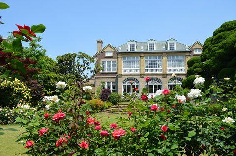House, Property, Flower, Garden, Home, Garden roses, Plant, Building, Botany, Spring,