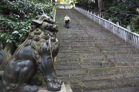 Statue, Sculpture, Botany, Art, Tree, Monument, Temple, Plant, Bronze sculpture, Leisure,