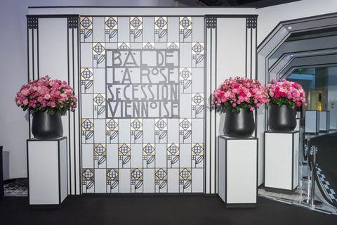 Flowerpot, Petal, Flower, Interior design, Fixture, Floristry, Cut flowers, Flower Arranging, Bouquet, Artifact,