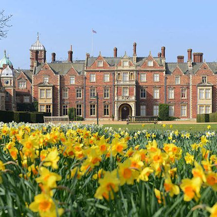 Flower, Yellow, Spring, Natural landscape, Château, Stately home, Estate, Plant, Garden, Building,