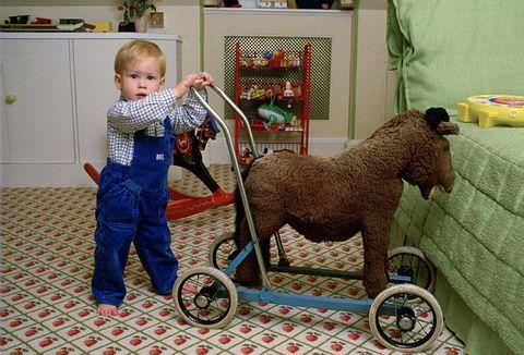 Vehicle, Toy, Working animal,