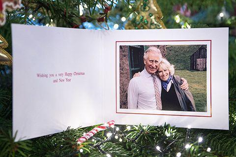 Photograph, Picture frame, Tree, Photography, Interior design, Room, Photograph album, Album, Anniversary, Photographic paper,