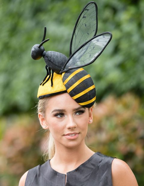 Insect, Head, Yellow, Headgear, Wasp, Membrane-winged insect, Photography, Ear, Pest, Invertebrate,