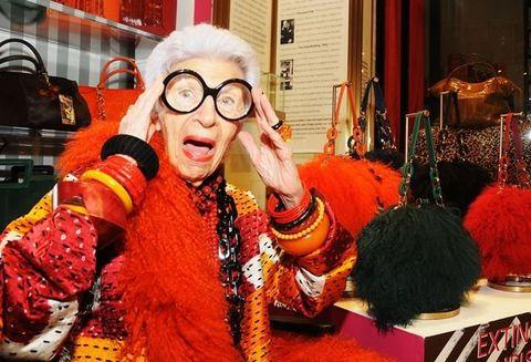 Orange, Eyewear, Glasses, Fur,