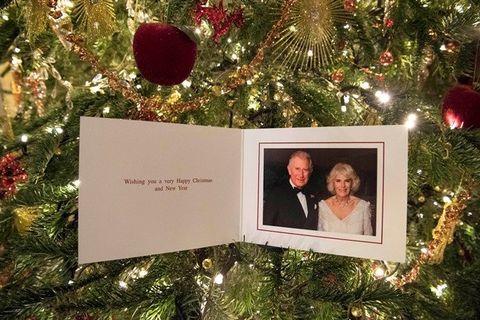 Christmas ornament, Christmas, Tree, Christmas tree, Holiday ornament, Fir, Christmas decoration, Ornament, Christmas eve, Branch,
