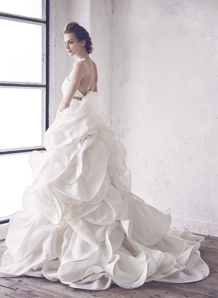 Gown, Wedding dress, Dress, Clothing, Bride, Bridal clothing, Photograph, Bridal party dress, Bridal accessory, Shoulder,