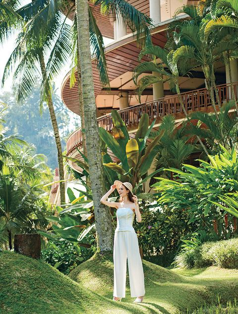 Vegetation, Botany, Plant, Tree, Plantation, Botanical garden, Vacation, Tropics, Palm tree, Ensete,