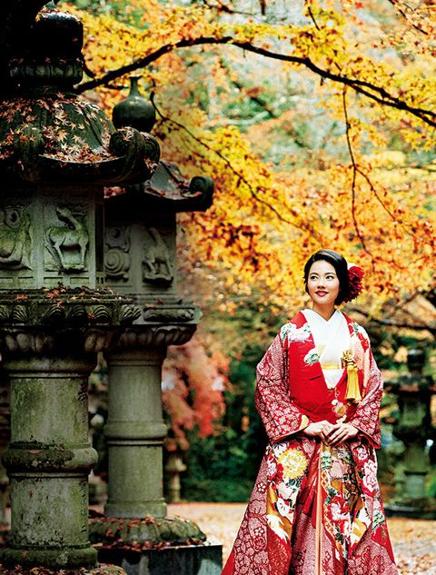 Tree, Autumn, Leaf, Kimono, Woody plant, Costume, Spring, Plant, Deciduous, Temple,