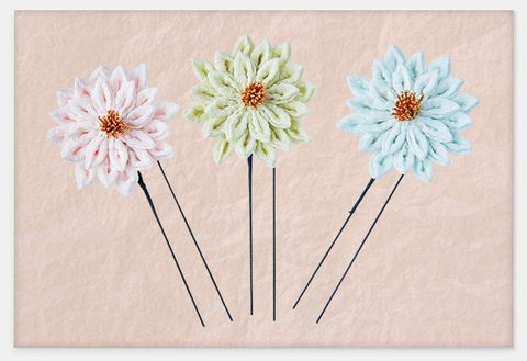 Flower, Gerbera, Plant, Cut flowers, Daisy, Chrysanths, Daisy family, Paper, Paper product, Wildflower,