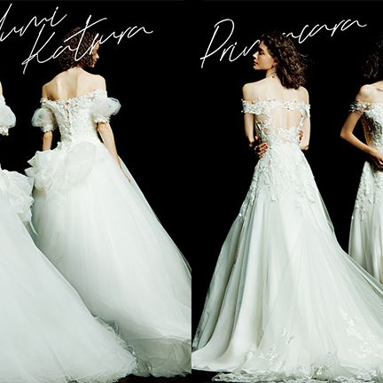 Gown, Wedding dress, Dress, Clothing, Bridal party dress, Fashion model, Bridal clothing, Shoulder, Bride, Bridal accessory,
