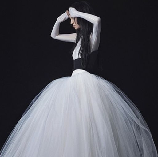 Dress, Gown, Clothing, Shoulder, Wedding dress, Bridal accessory, Bridal clothing, hoopskirt, Fashion, Joint,