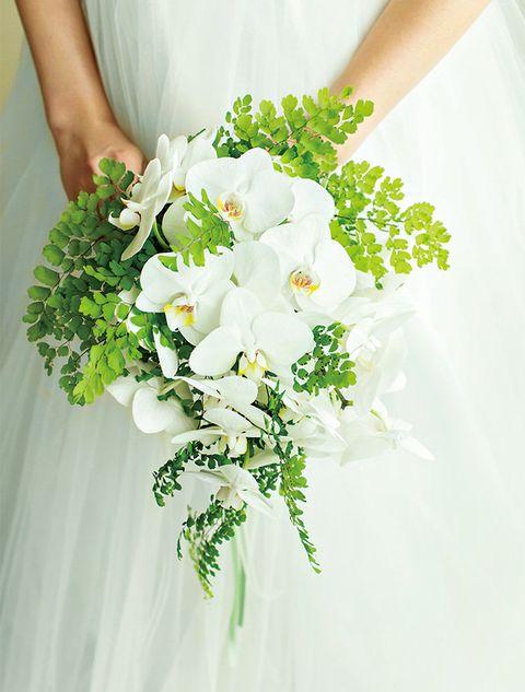 Petal, Bouquet, Flower, White, Cut flowers, Floristry, Flower Arranging, Floral design, Flowering plant, Artificial flower,