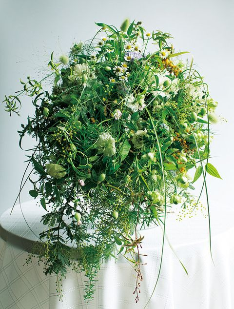 Flower, Plant, Bouquet, Floristry, Flower Arranging, Cut flowers, Floral design, Flowering plant, Grass, Herb,
