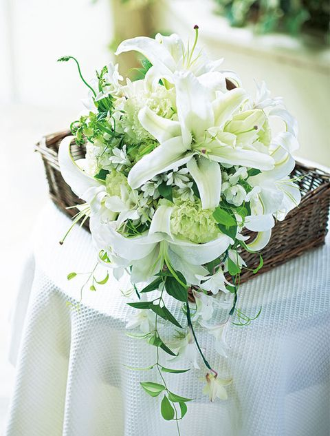 Flower, Bouquet, White, Cut flowers, Plant, Flower Arranging, Floristry, Wedding ceremony supply, Floral design, Dendrobium,