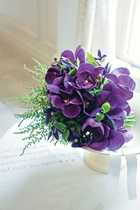 Petal, Flower, Purple, Lavender, Violet, Cut flowers, Flowering plant, Botany, Floristry, Flower Arranging,
