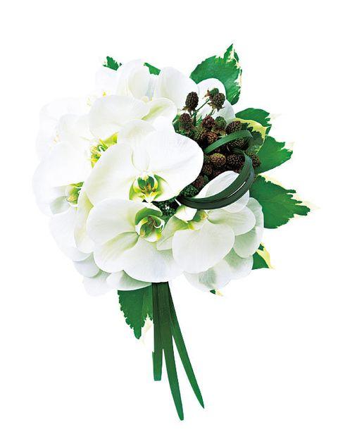 Petal, Flower, Botany, Flowering plant, Cut flowers, Artificial flower, Floral design, Paint, Blossom, Creative arts,