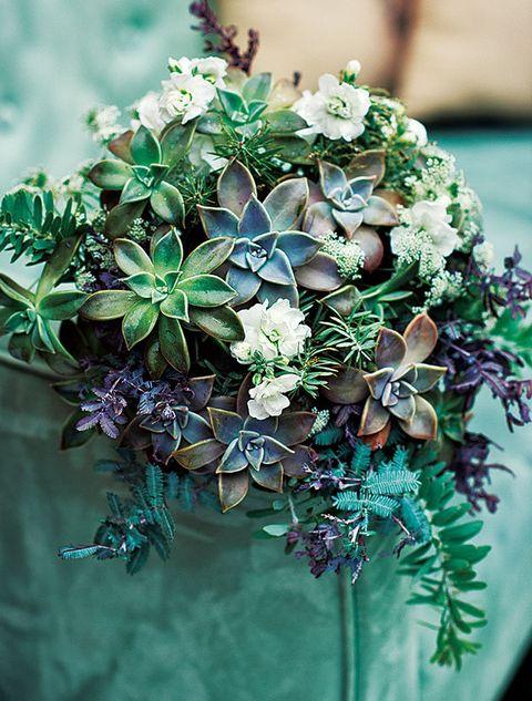 Petal, Flower, Terrestrial plant, Teal, Turquoise, Creative arts, Cut flowers, Artificial flower, Floral design, Natural material,
