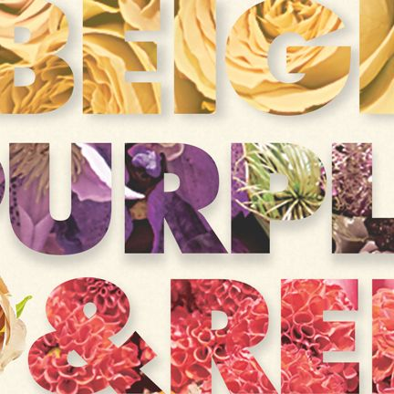 Purple, Yellow, Pink, Font, Plant, Fashion accessory,