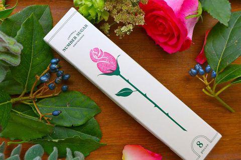 Pink, Flower, Plant, Leaf, Material property, Font, Rose, Paper, Party favor, Petal,
