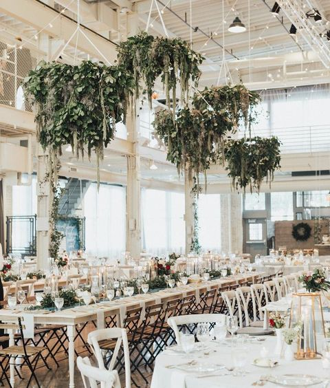 White, Branch, Chair, Lighting, Yellow, Tree, Building, Architecture, Furniture, Interior design,