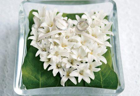 White, Flower, Petal, Plant, Jasmine, Flowering plant, Dendrobium, Cut flowers, Bouquet, Perennial plant,