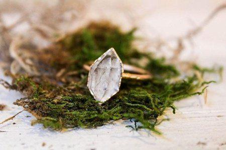 Leaf, Plant, Organism, Grass, Moss, Herb, Bombyx mori,