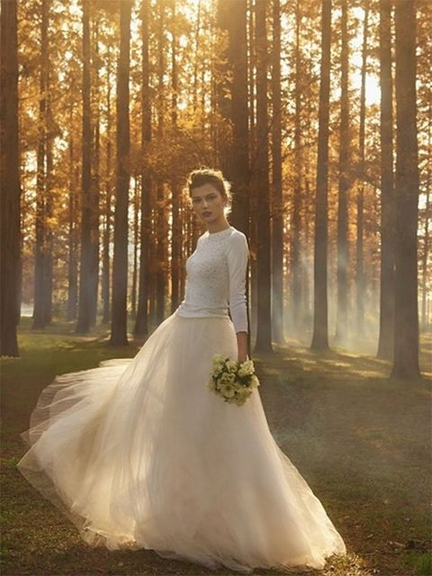 Gown, Bride, Wedding dress, Dress, People in nature, Photograph, Bridal clothing, Clothing, Bridal party dress, Natural environment,