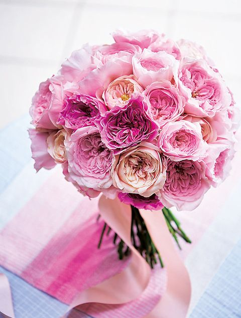 Flower, Bouquet, Pink, Cut flowers, Garden roses, Rose, Plant, Rose family, Flowering plant, Rosa × centifolia,