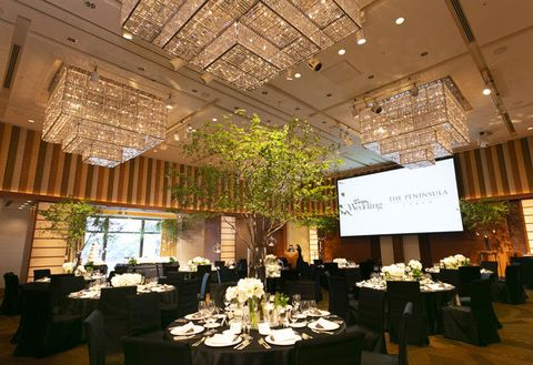 Function hall, Ceiling, Lighting, Building, Restaurant, Event, Interior design, Room, Rehearsal dinner, Banquet,