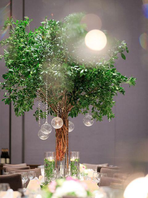 Branch, Twig, Interior design, Decoration, Flower Arranging, Holiday, Centrepiece, Floral design, Ornament, Vase,