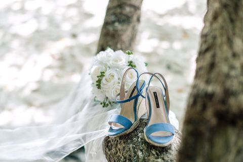 Photograph, Blue, Footwear, Yellow, Turquoise, Tree, Spring, Shoe, Plant, Flower,
