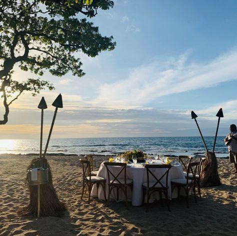 Sky, Shore, Sea, Tree, Water, Beach, Vacation, Ocean, Tourism, Coast,