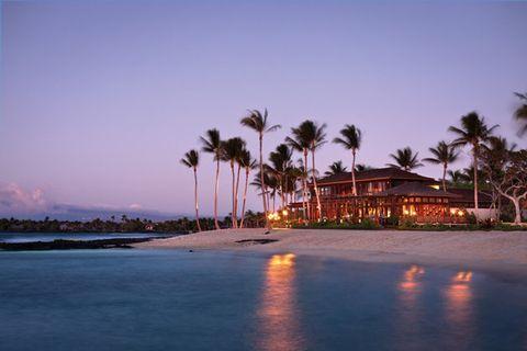 Sky, Tree, Palm tree, Sea, Resort, Vacation, Tropics, Ocean, Beach, Arecales,