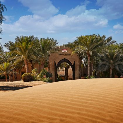 Natural environment, Desert, Vegetation, Sky, Tree, Sand, Landscape, Palm tree, Aeolian landform, Arecales,