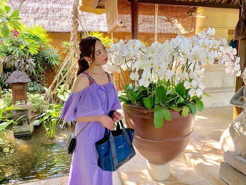 Flower, Flowerpot, Houseplant, Plant, Floristry, Purple, Spring, Botany, Floral design, Flower Arranging,