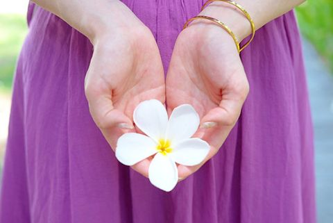 Purple, Pink, Violet, Hand, Petal, Skin, Lilac, Yellow, Finger, Flower,