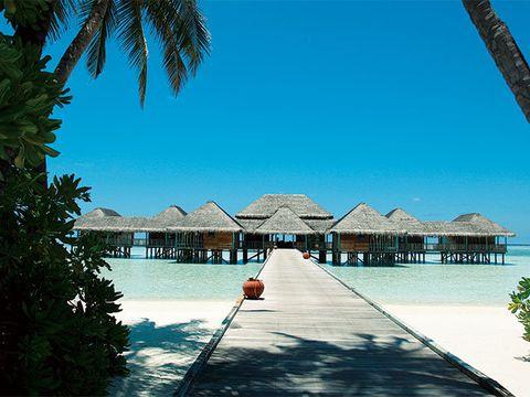 Resort, Vacation, Tropics, Sky, Tree, Caribbean, Palm tree, Ocean, Sea, House,