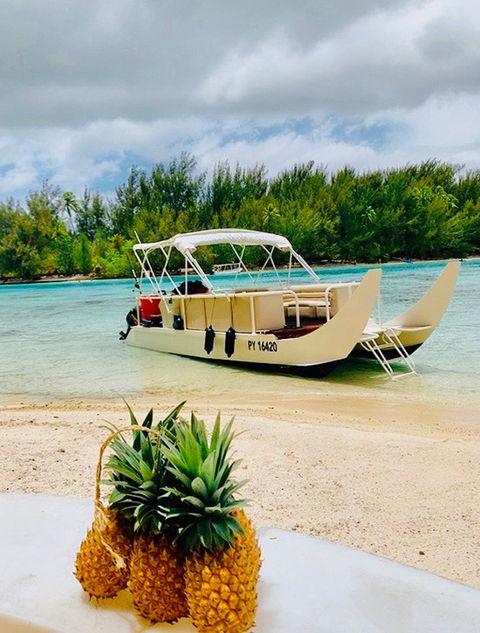 Water transportation, Transport, Vehicle, Mode of transport, Boat, Vacation, Tropics, Sky, Tree, Plant,