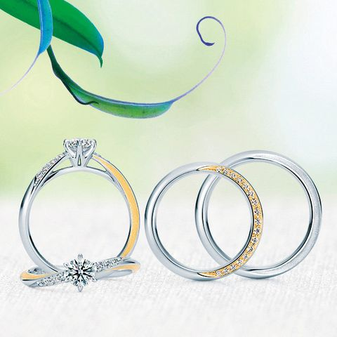 Jewellery, Fashion accessory, Body jewelry, Silver, Circle, Earrings, Metal, Platinum,